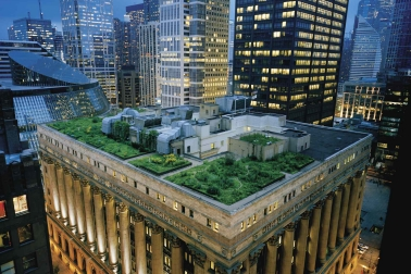 A green roof on Chicago's City Hall.